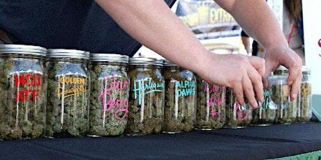 New England Marijuana Dispensary Training - May 30th tickets