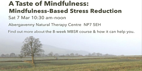 A Taste of Mindfulness: Mindfulness-Based Stress Reduction (7 March) tickets