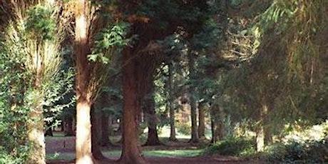 Coleford Area Walking Festival: 7  Cyril Hart Arboretum Walk tickets