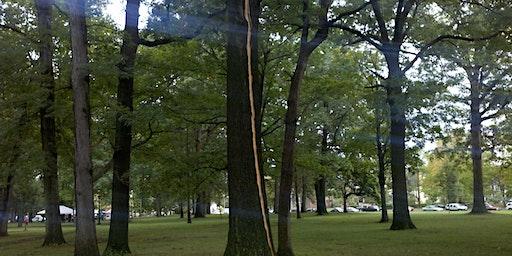 Treez Please Fundraiser and Earth Hour Celebration