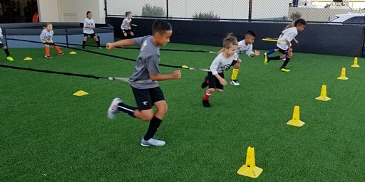 Youth Speed, Agility and Strength Training