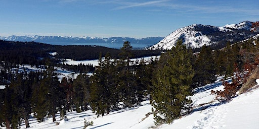 Forest Management in the Eastern Sierra – Why and How