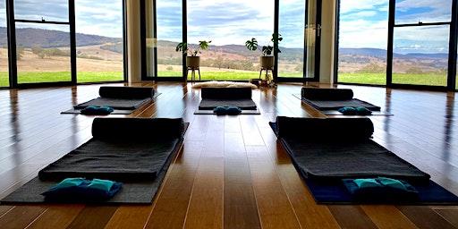 Yin & Yoga Nidra Immersion