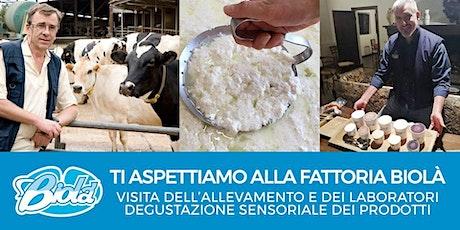 7 Marzo • Visita Fattoria Biologica Biolà con Degustazione Sensoriale biglietti