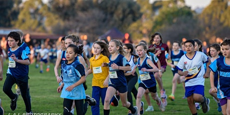 2020 Berwick Kids Running Festival tickets
