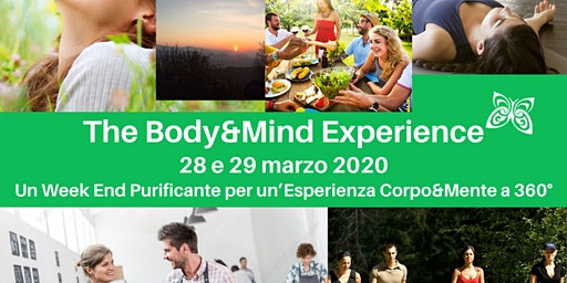 The Body&Mind Experience