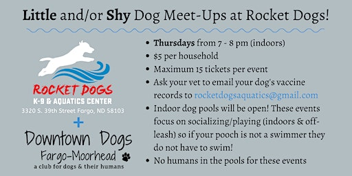 Little and/or Shy Dog Meet-Ups at Rocket Dogs!