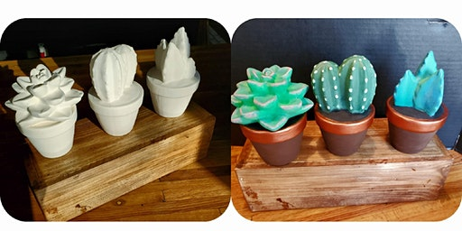 Set of Succulents  $30.00