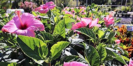 Florida Gardening for Newbies tickets