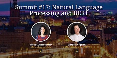 Stockholm AI Summit #17 | Natural Language Processing and BERT tickets