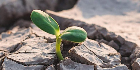 Resilience: Meditations on a changing climate tickets