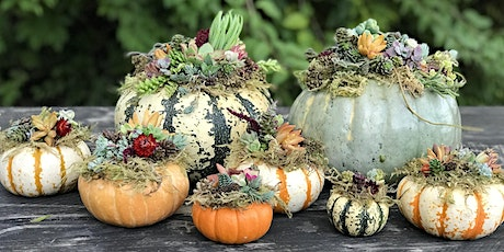 Forever Bloom Farm  - Fall Harvest Workshop – Pescadero, CA – 10/10/20 tickets