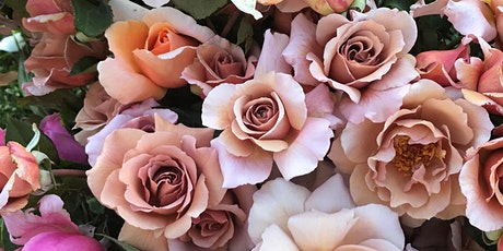 Soho Rose Farm Mother's Day Open Day tickets