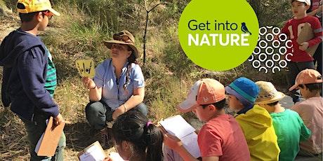 Parramatta World Environment Day 2020 Celebrations (Bushland Round Robin) tickets
