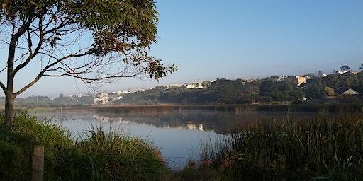 Begola Wetlands, Ocean Grove Walk and Talk - Geelong Nature Forum