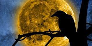 Full Moon in Virgo, Open Meditation Circle, A Crow Moon