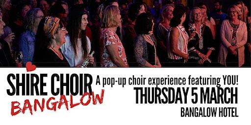 Shire Choir Bangalow - March 2020