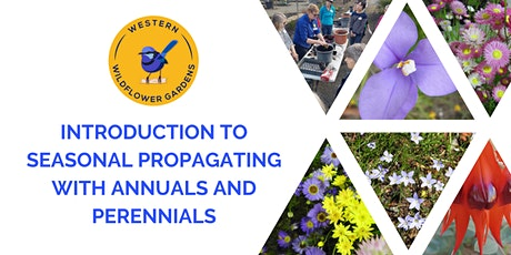 Introduction to Seasonal Propagating with Annuals and Perennials tickets