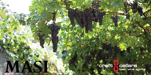 Craft Cellars Presents Italy's Masi Winery with James Bornn