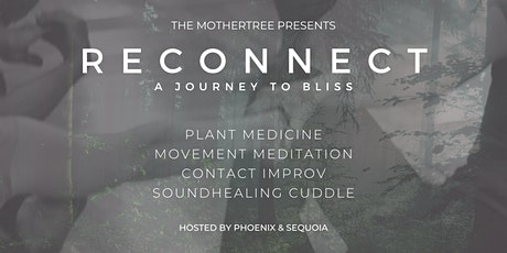 RECONNECT: A Journey to Bliss tickets
