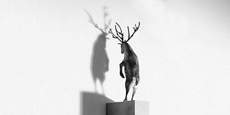 Sculpture, History, Curve: Paloma Varga Weisz tickets