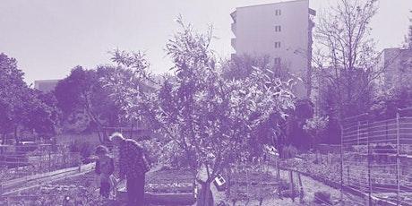 À la découverte des jardins vivants toulonnais tickets