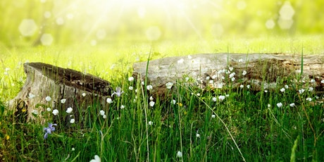 Spring Equinox Workshop - Yoga and Intention Setting tickets