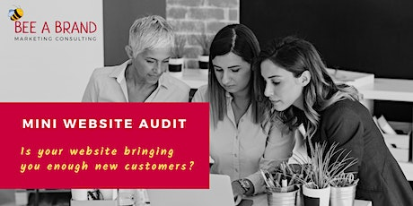 Mini Website Audit: We assess if your website is effective & give you ideas about how to IMPROVE it entradas