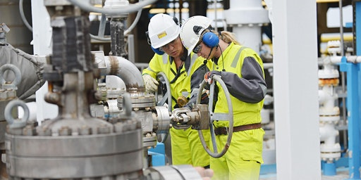Gas Processing and Conditioning: Muscat