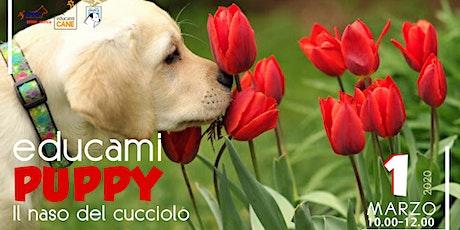 Puppy Class - Il naso del Cucciolo biglietti