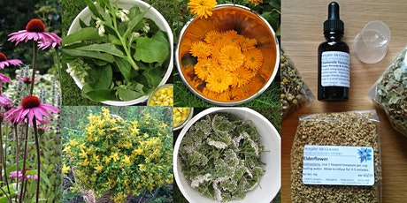 Herbalist @ Home - Summer Herbal Farmacy tickets