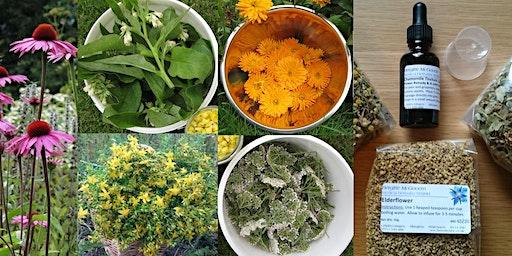 Herbalist @ Home - Summer Herbal Farmacy