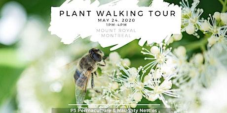 Plant Walking Tour of Mount Royal billets
