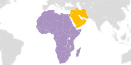 Africa and Middle East Regional Network meeting tickets