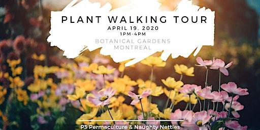 Plant Walking Tour of Botanical Gardens