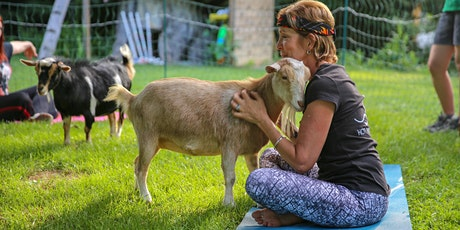 Goat Yoga At Side Stage Taproom Single Cut North tickets