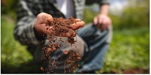Preparing Your Soil