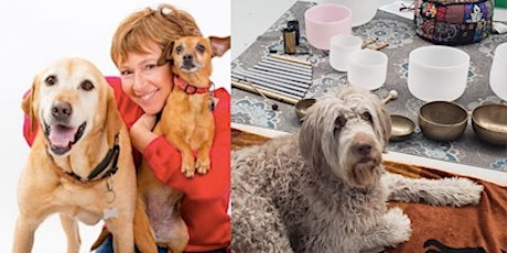 Tuning Into Yourself & Your Dog with Animal Communication & Sound Healing tickets