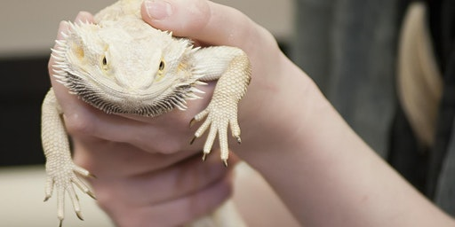 Zoo Keeping Technology Information Session at Pikes Peak Community College