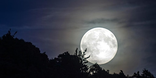 Super Full Moon and Earthing Ceremony at SLO Botanical Garden