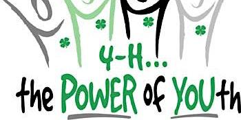 Wakulla 4-H Teen Leadership Summit