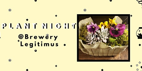 Create a Succulent Pansy Planter- PlantHer Plant Night @ Brewery Legitimus tickets