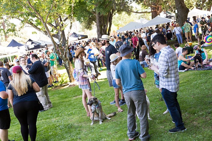 Bark n' Brewfest: a craft beer festival benefiting shelter pets! image