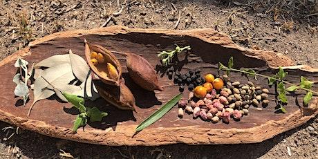 Tasting Australia — Forecourt tours and tea with Adam Shipp of Yurbay