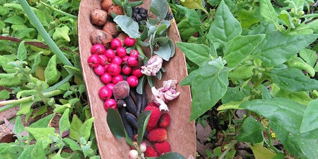 OH HOLD: Food Foragers Workshop  tickets