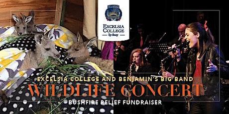 Excelsia College and Benjamin's Big Band Wildlife Concert – Bushfire Relief tickets