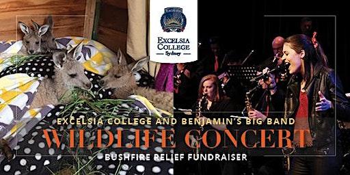 Excelsia College and Benjamin's Big Band Wildlife Concert – Bushfire Relief