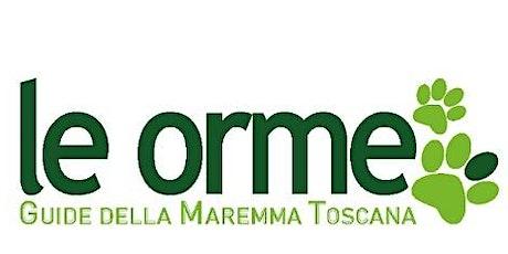 20 anni con LE ORME - Guide della Maremma Toscana biglietti