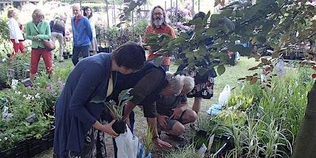 Cursus tuinontwerp 'gemengde bloemenborder' tickets