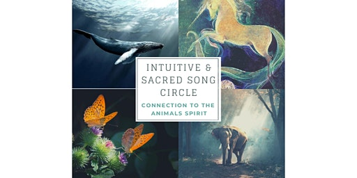 Intuitive & Sacred Song Circle/Connexion to the animals spirit - Full cycle